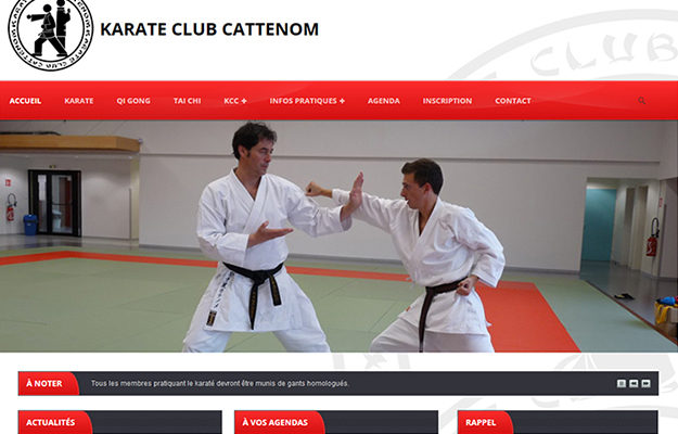 Agence Web Effect Karate Club Cattenom
