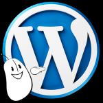 Agence Web Effect Klik WordPress