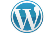 Agence Web Effect wordpress