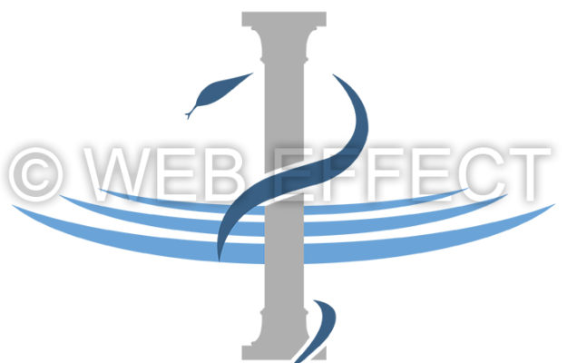 Agence Web Effect logo fmc